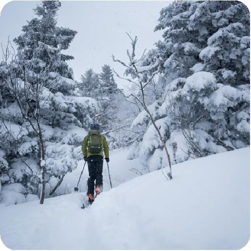 Boutons_hiver-Quoi-faire_Microtel-Lac-Megantic-01